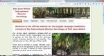 Meditation Retreats in English Language at Wat Suan Mokkh