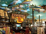 Fishing Sports Clothing Online Shopping