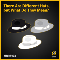 White hat,  black hat and grey hat hackers