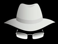 White hat hackers and the Deep Web