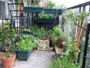 condo and apartment gardens - Apartment Garden